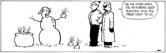 Calvin and Hobbes Strip
